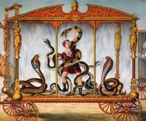 Schlangen mit Mann