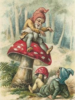 Pilz Gnome