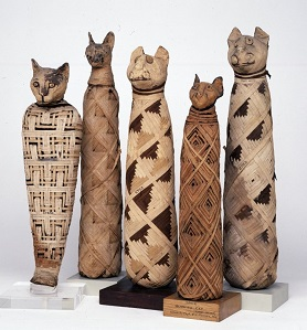 Katzenmumien