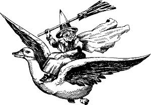 Hexe fliegt auf Gans