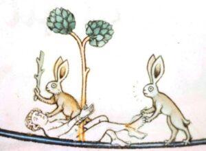 Hasen - Bad Bunnys
